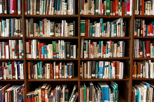 assorted books on shelf about how to write a book review
