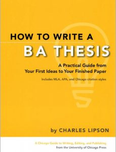 Read more about the article BA Thesis